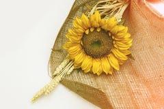 Ηλίανθος λουλουδιών Στοκ Φωτογραφία