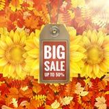 Ηλίανθος στο φύλλωμα φθινοπώρου με την ετικέττα πώλησης 10 eps Στοκ Φωτογραφίες
