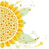 Ηλίανθος, floral σχέδιο Στοκ Εικόνες