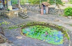 Η λίμνη με τα λουλούδια στον παλαιό ναό Στοκ Εικόνες