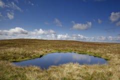 Η λίμνη στον άγριο κάπρο έπεσε στοκ φωτογραφίες με δικαίωμα ελεύθερης χρήσης