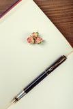 Η λαβή μελανιού βρίσκεται στην κενή σελίδα ενός σημειωματάριου Στοκ εικόνες με δικαίωμα ελεύθερης χρήσης