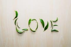Η αγάπη λέξης έκανε με τα φύλλα του λουλουδιού ruscus στο ξύλινο αγροτικό υπόβαθρο τοίχων Ακόμα ζωή, ύφος eco, τοπ άποψη Στοκ Εικόνες