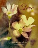 Η αγάπη δεν αποτυγχάνει ποτέ - εμπνευσμένος στίχος με το υπόβαθρο λουλουδιών στοκ φωτογραφίες