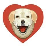 Η αγάπη των σκυλιών Λαμπραντόρ Στοκ Εικόνες