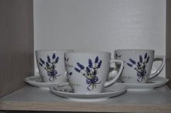 Η αγαπημένη lavender μου συλλογή Στοκ φωτογραφία με δικαίωμα ελεύθερης χρήσης