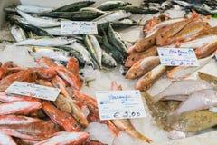 Η αγορά ψαριών στοκ εικόνες με δικαίωμα ελεύθερης χρήσης