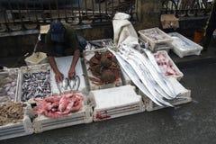 Η αγορά ψαριών essaouira Μαρόκο Στοκ φωτογραφία με δικαίωμα ελεύθερης χρήσης