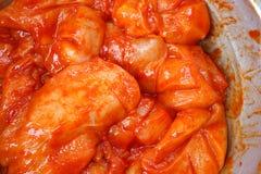 Η ακατέργαστη λωρίδα στηθών κοτόπουλου εζυμώνομσε την πικάντικη σκόνη Στοκ Εικόνες