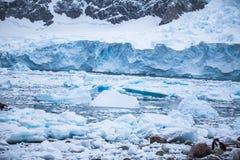 Η ακτή Ανταρκτική με παγώνει και παγόβουνα των ασυνήθιστων μορφών, χρώματα Στοκ Φωτογραφία