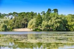 Η ακτή λιμνών Στοκ εικόνα με δικαίωμα ελεύθερης χρήσης