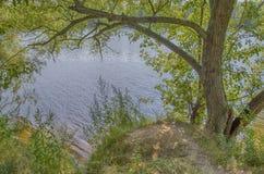 Η ακτή λιμνών Στοκ Φωτογραφία