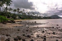 Η ακτή κατά μήκος του πάρκου παραλιών Kawaikui, Oahu, Χαβάη στοκ φωτογραφία
