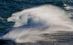 Η ακτή στη χερσόνησο Valdes ενάντια στα συντρίβοντας &k Αργεντινοί Στοκ Εικόνες