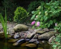 Η ακτή της λίμνης με τις μεγάλες πέτρες, με το ρόδινο hydrangea άνθισης Στο υπόβαθρο της λίμνης κήπων αυξηθείτε evergreens στοκ φωτογραφία με δικαίωμα ελεύθερης χρήσης