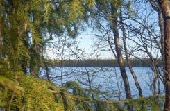 Η ακτή του ποταμού Tuloma στο Βορρά Στοκ Εικόνες