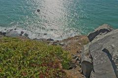 Η ακτή Redwood δυτικά του υψηλού Bluff αγνοεί κοντά στην άκρη απότομων βράχων Στοκ Φωτογραφίες