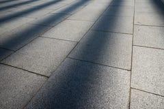 Η ακτίνα ήλιων στο έδαφος, μπορεί να χρησιμοποιήσει ως υπόβαθρο Στοκ Εικόνες