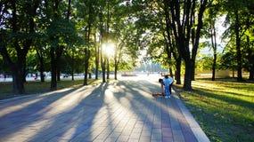 Η αλέα πάρκων στο ηλιοβασίλεμα Στοκ Εικόνα