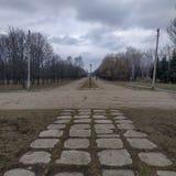 Η αλέα στο πάρκο ιωβηλαίου στην πόλη Kramatorsk, Ουκρανία στοκ εικόνες