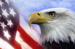 η Αμερική δηλώνει ενωμένο Στοκ εικόνες με δικαίωμα ελεύθερης χρήσης