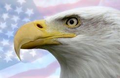 η Αμερική δηλώνει ενωμένο Στοκ φωτογραφία με δικαίωμα ελεύθερης χρήσης
