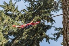 Η αμερικανική σημαία είναι συνδεμένη με ένα δέντρο, η ΑΜΕΡΙΚΑΝΙΚΗ σημαία τίθεται σε ένα δάσος πεύκων, μια ηλιόλουστη ημέρα με ένα Στοκ φωτογραφία με δικαίωμα ελεύθερης χρήσης