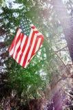 Η αμερικανική σημαία είναι συνδεμένη με ένα δέντρο, η ΑΜΕΡΙΚΑΝΙΚΗ σημαία τίθεται σε ένα δάσος πεύκων, μια ηλιόλουστη ημέρα με ένα Στοκ Φωτογραφία