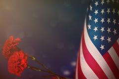 Η ΑΜΕΡΙΚΑΝΙΚΗ σημαία για την τιμή των παλαιμάχων ή της ημέρας μνήμης με το κόκκινο γαρίφαλο δύο ανθίζει Δόξα στους ΑΜΕΡΙΚΑΝΙΚΟΥΣ  ελεύθερη απεικόνιση δικαιώματος