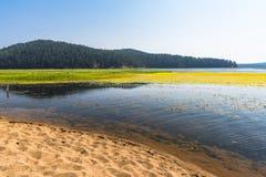 Η αμμώδης ακτή της λίμνης Στοκ Φωτογραφία