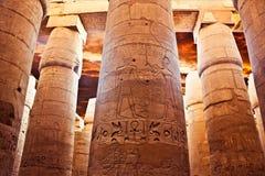 Η αναζοωγόνηση του Pharaoahs Στοκ Εικόνες