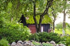 η ανασκόπηση ανθίζει τη mossy στέγη φυτών σπιτιών κήπων Στοκ εικόνες με δικαίωμα ελεύθερης χρήσης