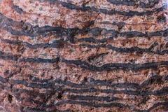 η ανασκόπηση απαρίθμησε την πραγματική πέτρα πολύ Στοκ Εικόνες