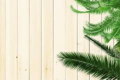 η ανασκόπηση αφήνει ξύλινο&sig Στοκ Εικόνες
