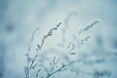 η ανασκόπηση εύκολη επιμελείται τη φύση εικόνας στο διανυσματικό χειμώνα 33c ural χειμώνας θερμοκρασίας της Ρωσίας τοπίων Ιανουαρ Στοκ φωτογραφίες με δικαίωμα ελεύθερης χρήσης