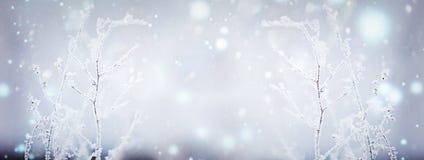 η ανασκόπηση εύκολη επιμελείται τη φύση εικόνας στο διανυσματικό χειμώνα 33c ural χειμώνας θερμοκρασίας της Ρωσίας τοπίων Ιανουαρ Στοκ Εικόνες