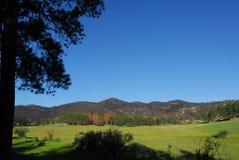 η ανασκόπηση καλύπτει το βουνό λιβαδιών του Κολοράντο rockies στοκ εικόνες με δικαίωμα ελεύθερης χρήσης