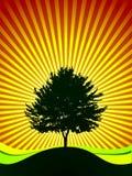 η ανασκόπηση λάμπει διάνυσμα δέντρων απεικόνιση αποθεμάτων