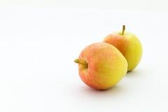 η ανασκόπηση μήλων έχει το ξινό λευκό προτίμησης Στοκ Φωτογραφίες