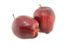 η ανασκόπηση μήλων απομόνωσε το ανοικτό κόκκινο λευκό σκιάς Στοκ εικόνα με δικαίωμα ελεύθερης χρήσης