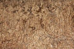η ανασκόπηση ράγισε την ξηρά &g Στοκ εικόνα με δικαίωμα ελεύθερης χρήσης