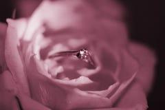 η ανασκόπηση ρόδινη αυξήθηκ Στοκ εικόνα με δικαίωμα ελεύθερης χρήσης