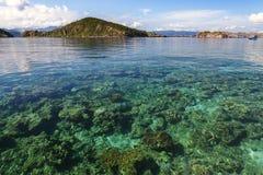 η ανασκόπηση 22 το 2009 κάνει τα ραβδιά ασφάλειας rangers εικόνων φωτογράφων μηνυτόρων σαυρών komodo Ιουλίου νησιών της Ινδονησία Στοκ Εικόνες