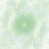 Η αναδρομική πράσινη κρητιδογραφία ανθίζει το υπόβαθρο Στοκ Εικόνα