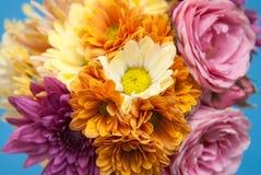 Η ανθοδέσμη από τα διάφορα χρώματα με τα τριαντάφυλλα, χρυσάνθεμο, Ώστιν αυξήθηκε κλείστε επάνω Στοκ Εικόνες