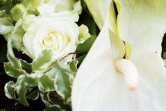η ανθοδέσμη αυξήθηκε γαμή&la Στοκ Φωτογραφίες