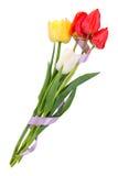 η ανθοδέσμη πέντε δένει τις τουλίπες με ταινία Στοκ Φωτογραφία
