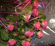 Η ανθοδέσμη των ερυθρών τριαντάφυλλων σε ένα γκρίζο υπόβαθρο, όμορφα λουλούδια με το νερό μειώνεται στοκ εικόνες
