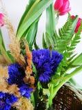 Η ανθοδέσμη των cornflowers και οι τουλίπες κλείνουν επάνω στοκ εικόνα
