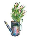 Η ανθοδέσμη Watercolor στο πότισμα μπορεί Στοκ Φωτογραφίες